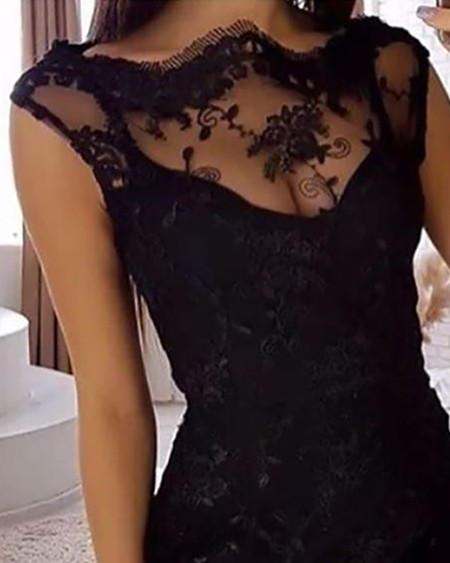 Sleeveless Sheer Lace Insert Bodycon Dress