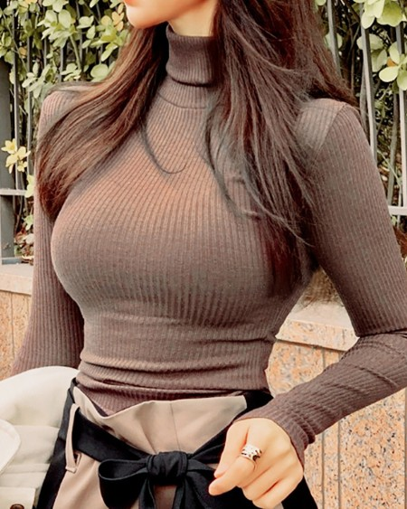 High Neck Plain Long Sleeve Top