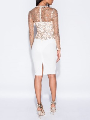 Sheer Mesh Sequined Patchwork Bodycon Dress