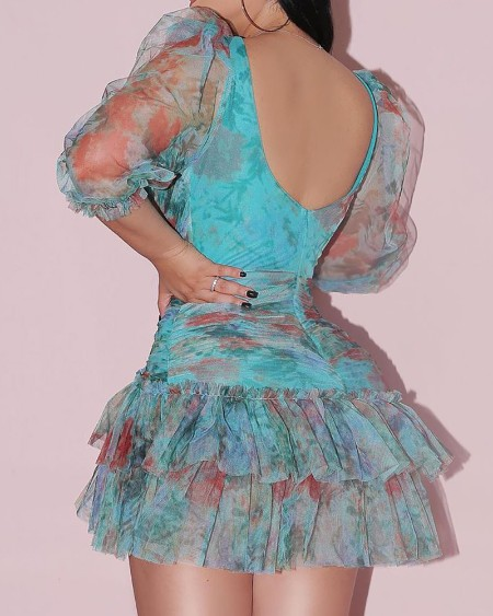 All Over Print Sheer Mesh Puff Sleeve Ruched Dress