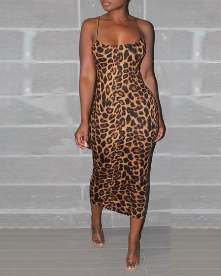 Sexy Leopard