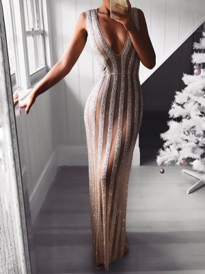 Glittering Mesh Sleeveless Maxi Dress