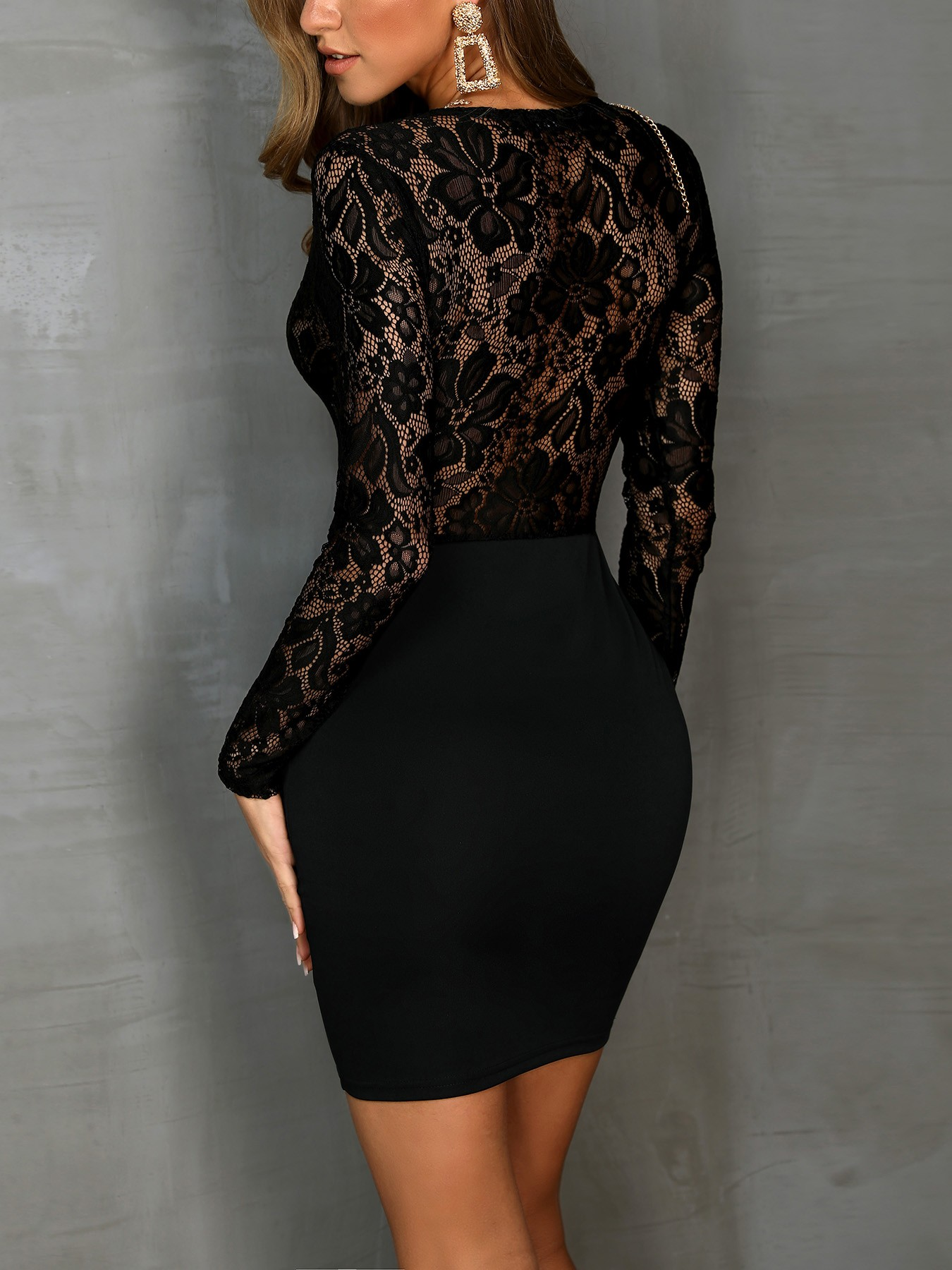 boutiquefeel / V-Neck Long Sleeve Lace Bodice Dress