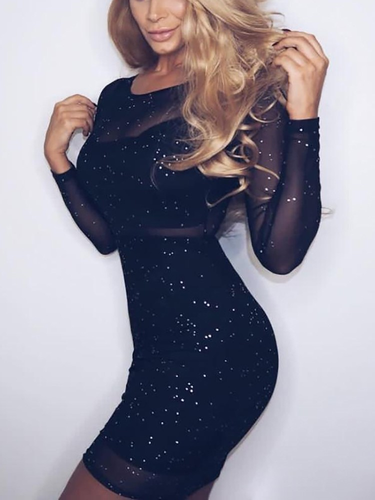 Glittering Sheer Mesh Bodycon Dress