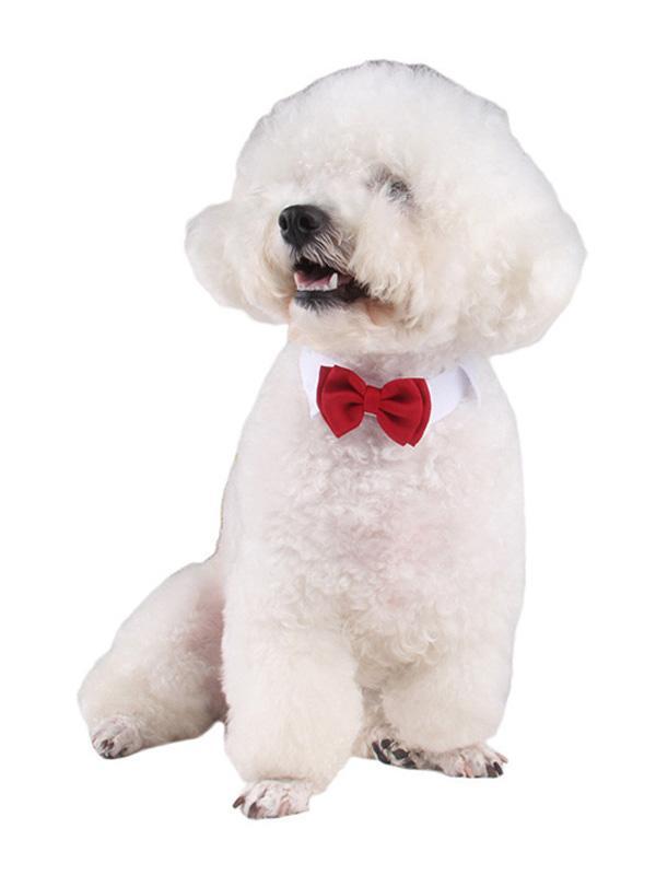Dog Tie Bowtie Pet Wedding Accessories Tie Pet Red Cotton Ties Christmas Accessories thumbnail